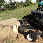 services thumbnail - stump grinding